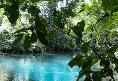El nacimiento de Pulhapanzak: una joya oculta de agua color turquesa
